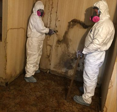 Crew in hazmats cleaning mold